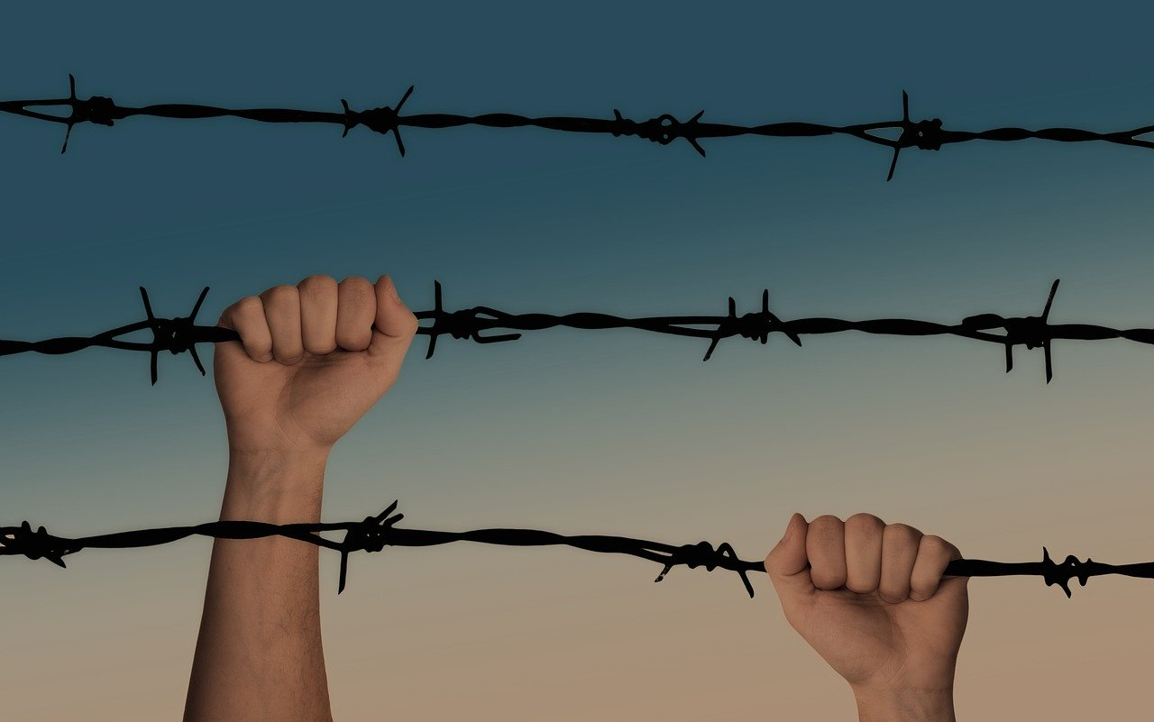 liberation or self preservation