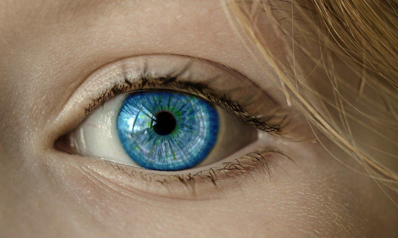 eye, blue eye, iris